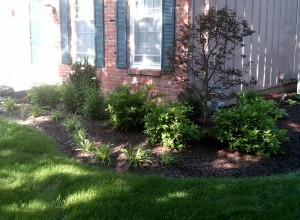 Landscape Design in Lenexa, KS